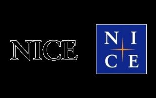 ABCTech 소프트웨어 공학 컨설팅, 비대면 소프트웨어 개발 방법론/문화- 나이스, nice, 나이스정보통신